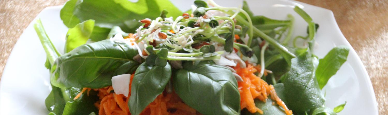 Bild von ayurvedischem Salat mit Sprossen und Möhren