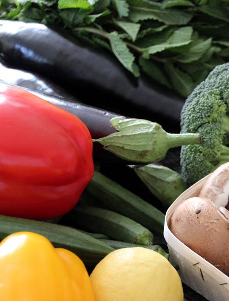 Bild von diversen Gemüsesorten aus der ayurvedischen küche